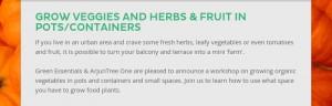 Grow Veggies n pots