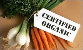 organic-product